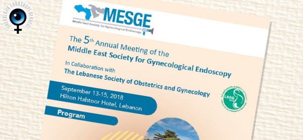September 13-15, 2018 - Middle East Society of Gynecological Endoscopy (MESGE)